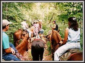 Horseback Hiking