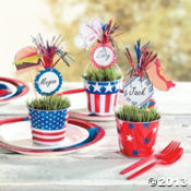 Patriotic Firework Placecards