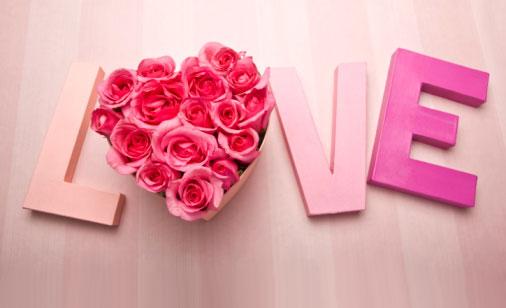 Love With Roses?wu003d470u0026hu003d286