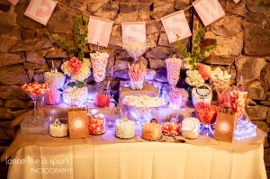 Atlanta_Wedding_Photographer_1385