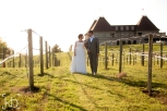 Couple walking in the vineyard