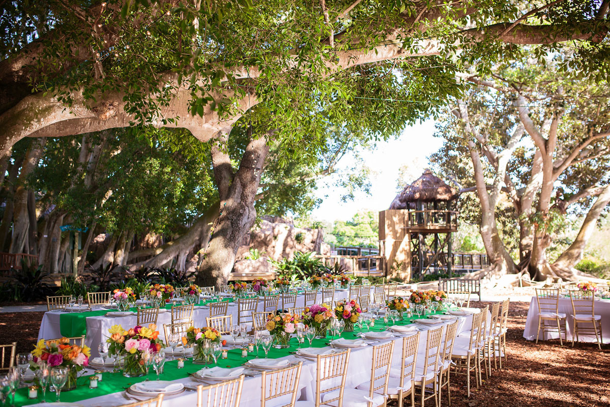 reception-under-the-great-oaks-photo-by-cpennenga
